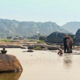 Lakshmi the Elephant Takes a Bath in Hampi