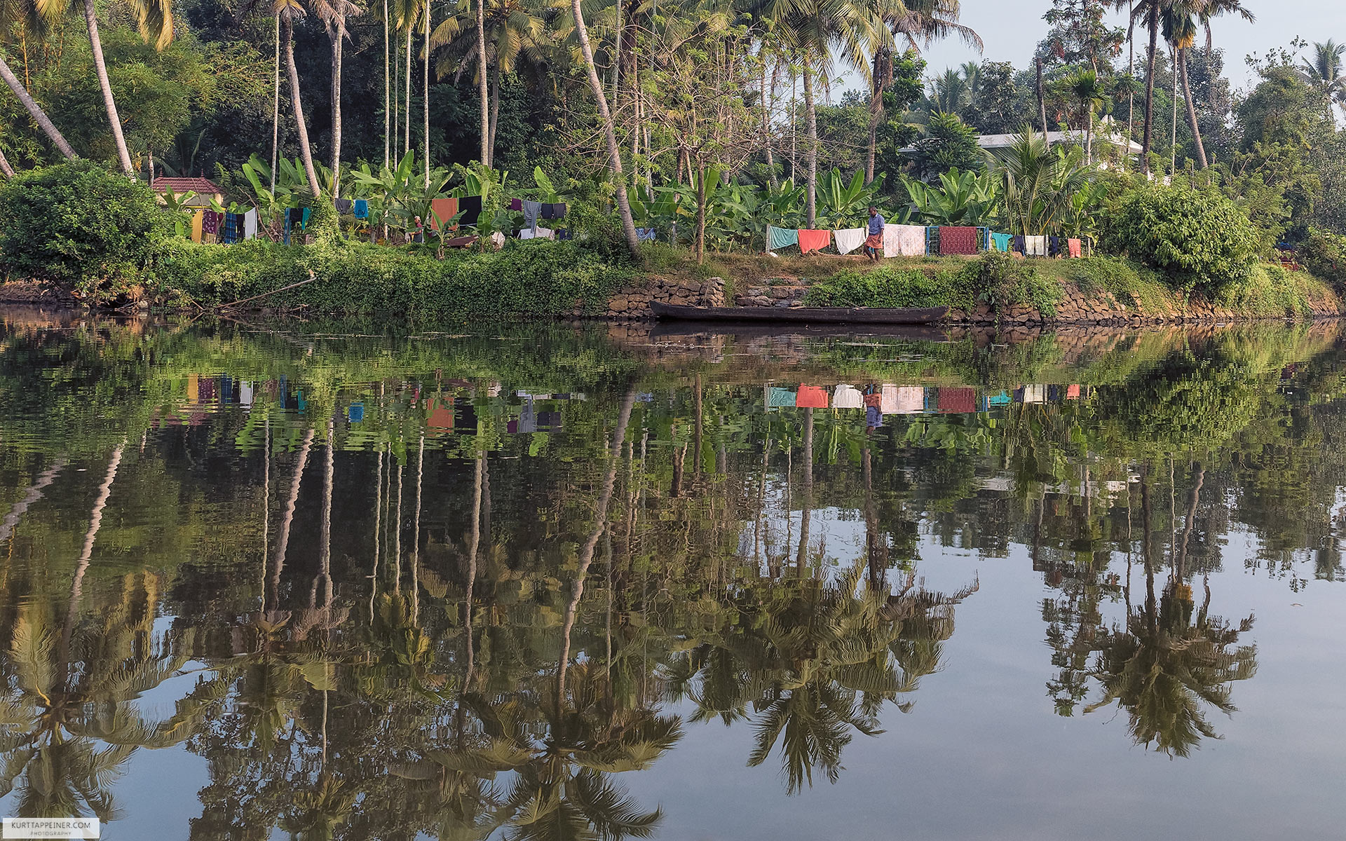 Palm Trees Reflection On Backwater Kerala