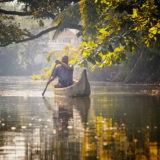 Traditional wooden canoe Backwater Kerala