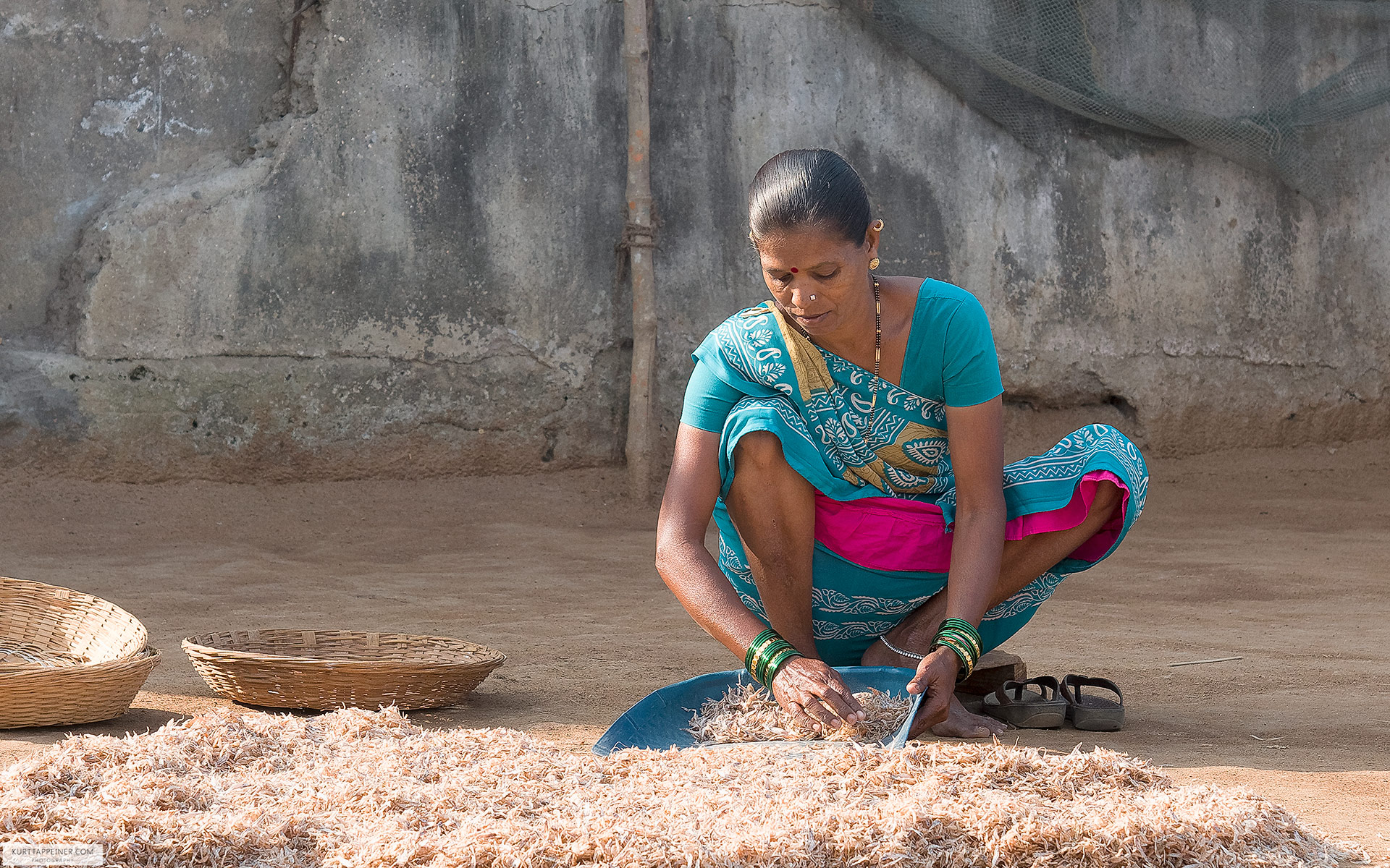 Indian Women sorting Fish