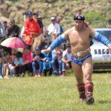 Naadam wrestler