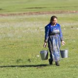 Mongolian agricultural worker